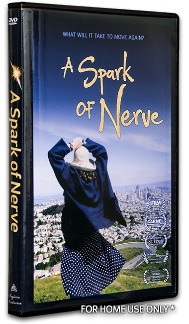 A Spark of Nerve DVD